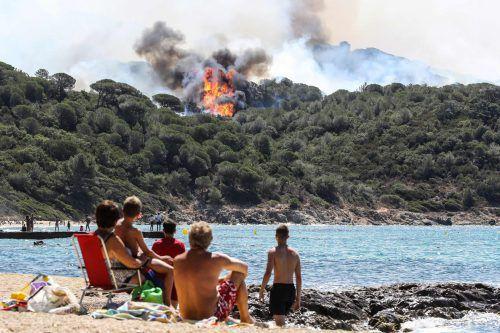 Die Feuerwehr kämpfte auch gegen einen Waldbrand in der Nähe von La Croix-Valmer.Foto: APA