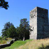 Wieder Vandalismus auf der Tostner Burg