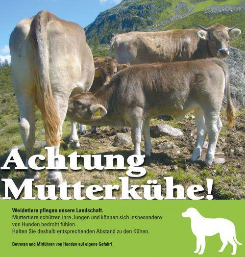 Warnung vor Mutterkühen. Man sieht diese Schilder auch in Vorarlberg häufig.