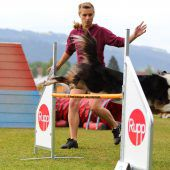 Agility-Cup in Hörbranz