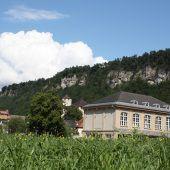 Reichenfeld soll Wildblütenwiese erhalten