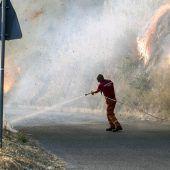 Flucht vor Waldbränden
