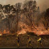 Waldbrände wüten im Westen Nordamerikas