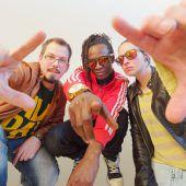 Konzerte for free beim poolbar-Festival