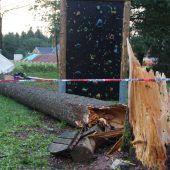 15-Jähriger in Zeltlager von Baum erschlagen
