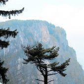 Strenge Wächter für den sensiblen gelben Felsen