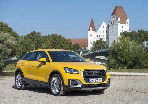 Den Unterbau hat der 4,19 Meter kurze Audi Q2 vom größeren Bruder Q3.Optisch unterscheidet er sich markant von seinen Familienmitgliedern.