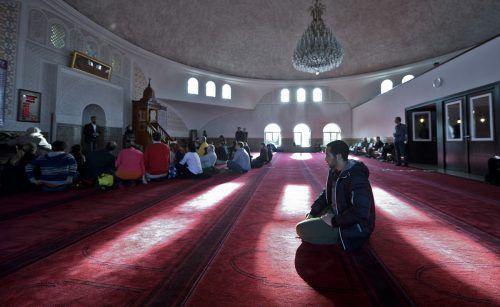 Der Anteil jener Menschen, die sich zum Islam bekennen, hat sich seit 2001 verdoppelt. Foto:APA