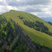 """<p class=""""caption"""">Der Naturpark Nagelfluhkette ist der erste grenzüberschreitende Naturpark zwischen Allgäu und Bregenzerwald. Fotos: Naturpark</p>"""