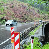 Umfassende Rodungen wegen Brückensanierung