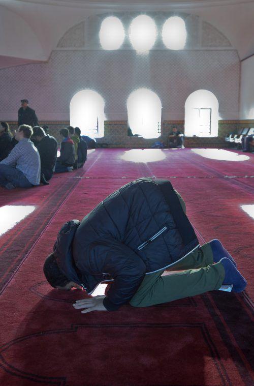 Ein Mann betet in einer Moschee in Wien. Foto:APA