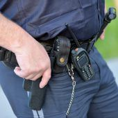 Polizist erlegt  schwer verletztes Reh in Garten