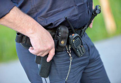Ein Polizist erlegte das Reh schließlich am Samstagabend mit einem gezielten Schuss aus seiner Dienstwaffe. Foto: APA