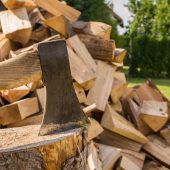 Sovl Holz git widr an Schlietto.