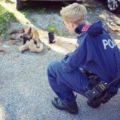 Polizistin auf vier Pfoten