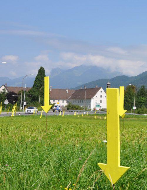 Gelbe Pfeile markieren in Bludenz achtlos Weggeworfenes.Foto: stb