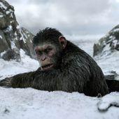 Menschen gegen Primaten