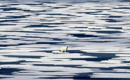 In knapp 40 Jahren verlor die Region rund 2,84 Millionen Quadratkilometer Meereis.Foto: AP