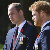 Prinzen verurteilen dasVerhalten der Paparazzi