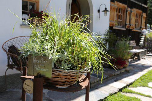 Private als auch Betrieben stellen ihre Gärten zur Verfügung.