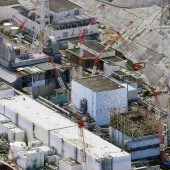 Bergungsarbeiten in Atomruine verzögern sich weiter