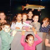 Volksschüler erkunden die inatura-Wasserwelt