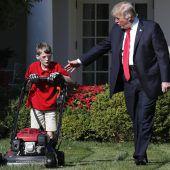 Elfjähriger mähte für Trump den Rasen