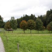 Feldkirch baut Rückhaltebecken