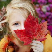 Philosophisch in den Herbst