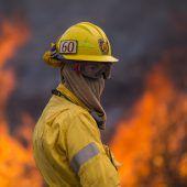 Los Angeles ruft wegen Waldbränden den Notstand aus