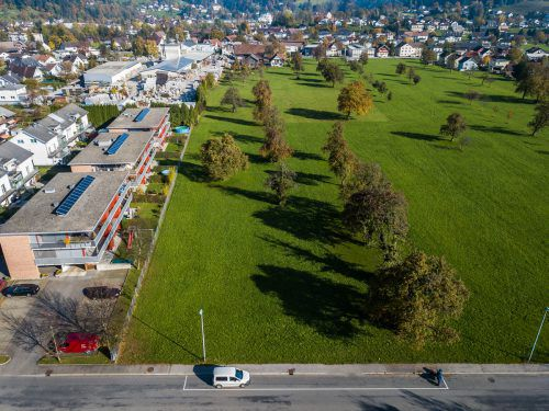 2350 Quadratmeter dieser Wiese in Wolfurt gehören Büchele, der sich öffentlich um die Grundstückspreisentwicklung sorgt.Steurer