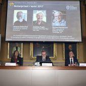 Chemie-Nobelpreis für Fortschritte in der Elektronenmikroskopie