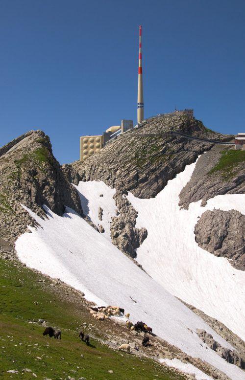 """Der tödliche Bergunfall, dem ein 48-jähriger Schweizer zum Opfer fiel, ereignete sich im Bereich des """"Blauen Schnees"""" unterhalb des Gipfels."""