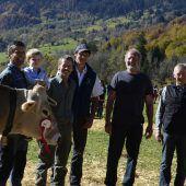 Bezirksausstellung: Das Vieh auf dem Laufsteg