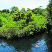 Abenteuer im Jungla Maya