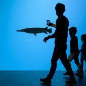 Größtes Süßwasser-Aquarium Europas steht in Lausanne