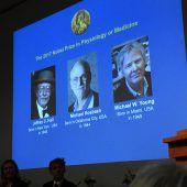 Medizinnobelpreis für Erforschung der inneren Uhr