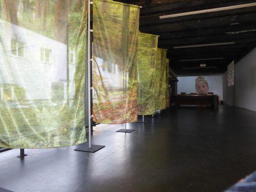 Ausstellung im Rahmen des Bilbao-Projektes in Bregenz. galerie lisi hämmerle