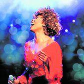 Das Leben von Tina Turner als musikalische Biografie