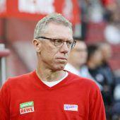 ÖFB-Coach für Stöger (noch) kein Thema