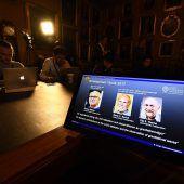 Nobelpreis für Blick auf bisher verborgene Phänomene