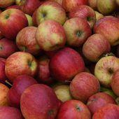 Äpfel sind das beliebteste Obst der Österreicher