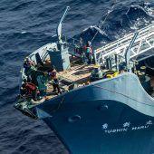 Japans Walfänger wieder ausgerückt