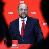 Basisabstimmung über große Koalition