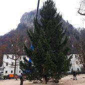Am Schlossplatz erstrahlt die Weihnachtsbeleuchtung
