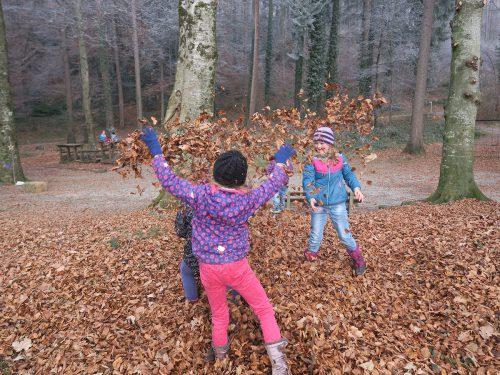Gemeinde investiert in den Waldspielplatz Ganta und die Spielwiese. Gemeinde Röthis