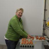Neuer Hühnerstall für regionale Eierversorgung