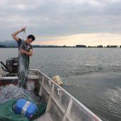 Bodenseefischer weiter in Nöten