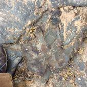 Dino-Fußabdruck absichtlich zerstört