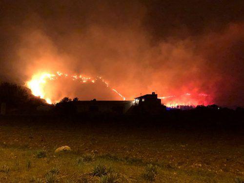 Der Großbrand zerstörte 75 Hektar Wald und bedrohte ganze Wohnsiedlungen. RTS